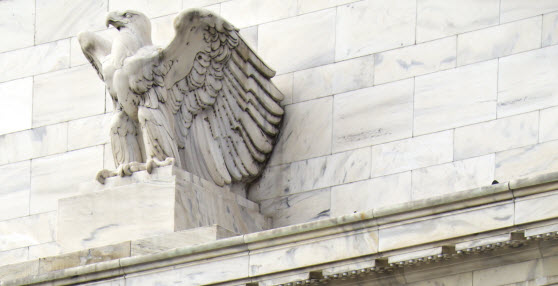Eagle perched at Board of Governors building