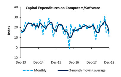 Capital Expenditures on Computers/Software