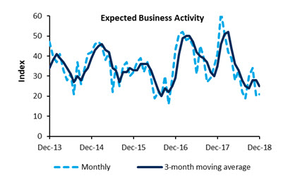 Expected Business Activity